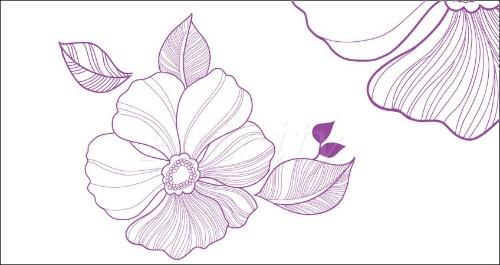 两百张韩国手绘花卉素材