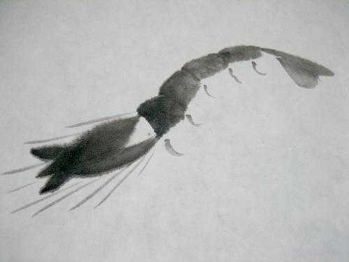 白石家法___长脚虾画法步骤示范图
