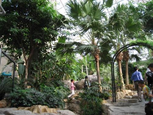 森林动物园(一)