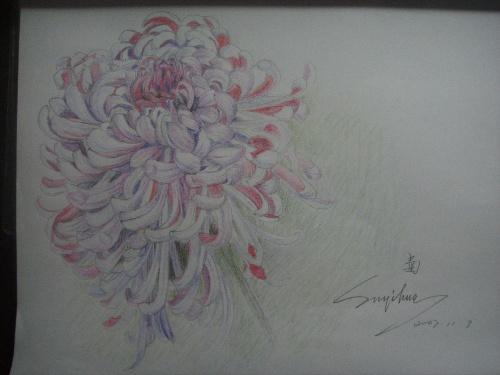 彩色铅笔画-绿野手绘壁画设计工作室-搜狐博客
