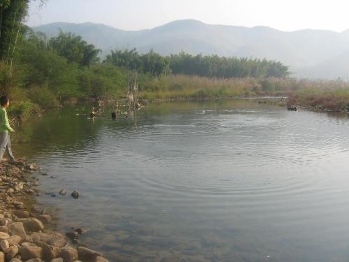 河源市紫金县上义镇招元村农业经济调查日记