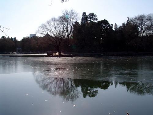 未名湖风光---北大系列摄影 4/?