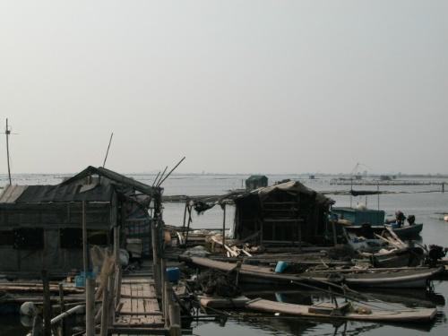 …简单的竹棚,竹子搭做的通道,几十块大大小小的圈养区,渔民们