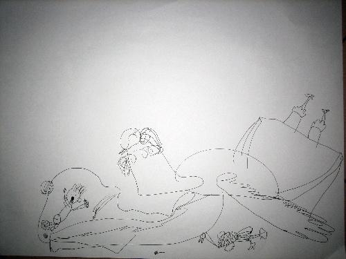 素描小白兔画法步骤