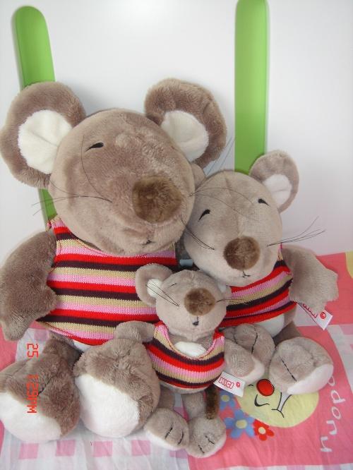 朋友送了我3只可爱的老鼠